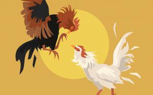 9 Cách làm gà chọi đỏ da đơn giản, dễ làm nhất